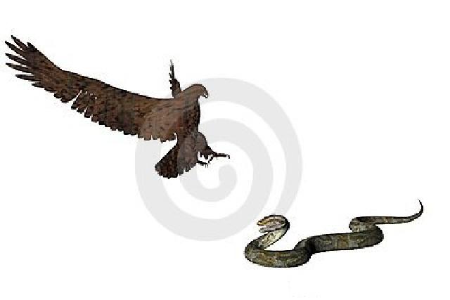 Primatene og 'reptilene' av denne verden (666) som opererer ved reptilhjernen er sjanseløs når deres kiv og strev observeres fra oven. De har fått sin tilmålte tid, de får kose seg og nyte sitt otium mens de kan, for de skal avsløres og falle igjen. Det er konjunkturene som er på deres side for øyeblikket bare, i Skapelsens mirakel.