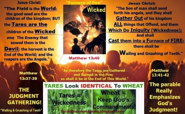 WHEAT & TARES JESUS JUDGMENT