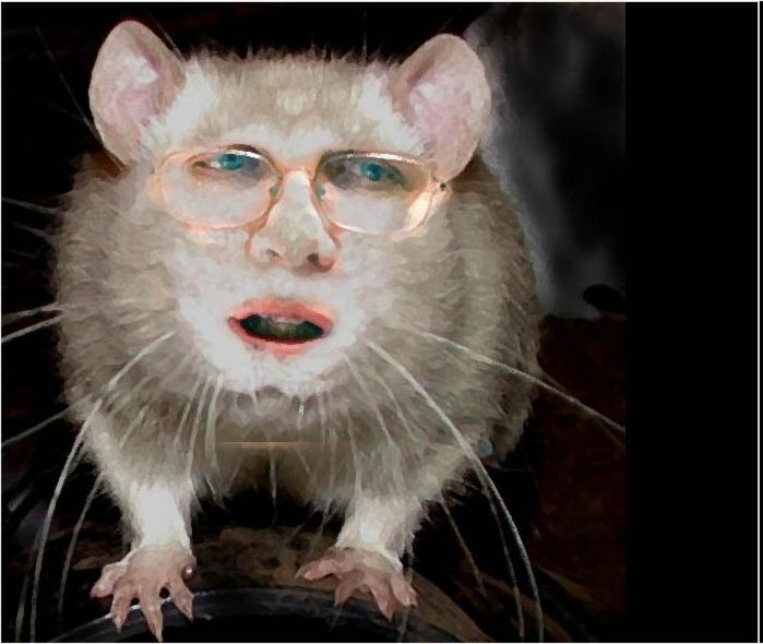 Røyk ut rottene (oppfordring)